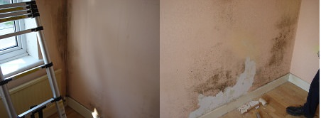 Black mould of walls and ceiling