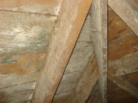 Secondary mould contamination of roof timbers