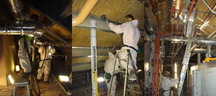 mould-removal-in-roof-x