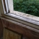 mould due to leaky window