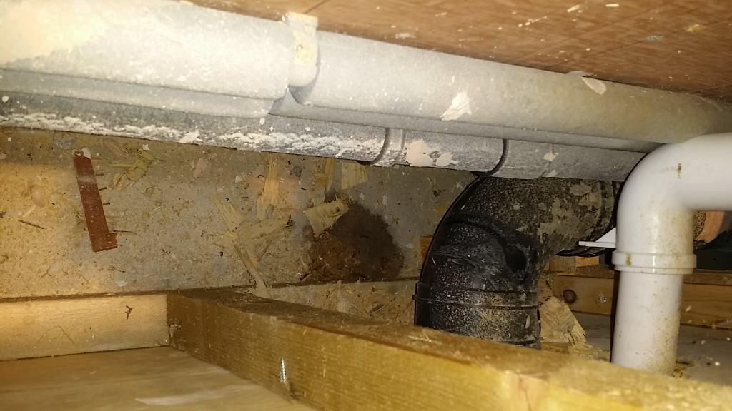 C47,master bedroom en suite, toilet cister leak