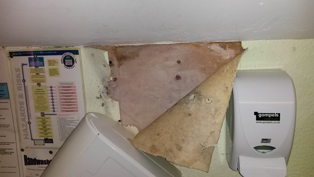 mould investigation in Langold in Yorkshire