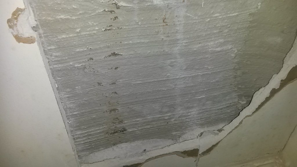 damp and mould investigation in Birmingham