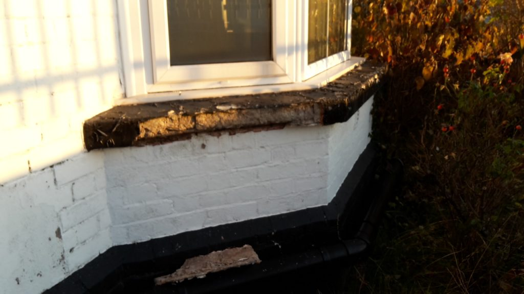damp and mould survey in exeter