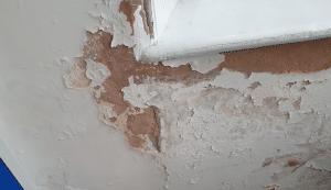 Pealing Lead Paint